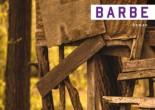 Barbe de Julie Demers, éditions Héliotrope, 9782923975740