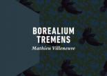 boréalium tremens